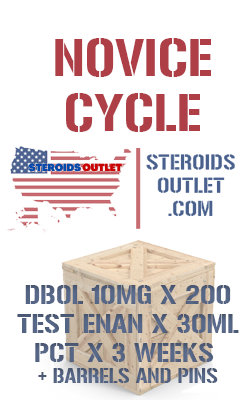 Buy Novice Steroid Cycle